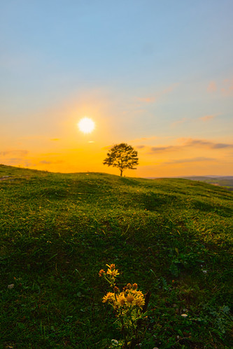 cissbury ring sunset country travel outside fuji fujifilm uk west sussex grass hill sun golden hour natgeo