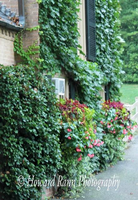 Conestoga House & Gardens (317)