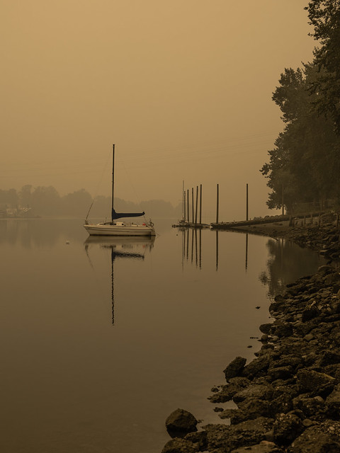 boat on willamette river on smokey morning (1)