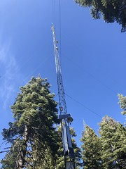 Tower at CZO Site_Sept.19_Katharine Reich