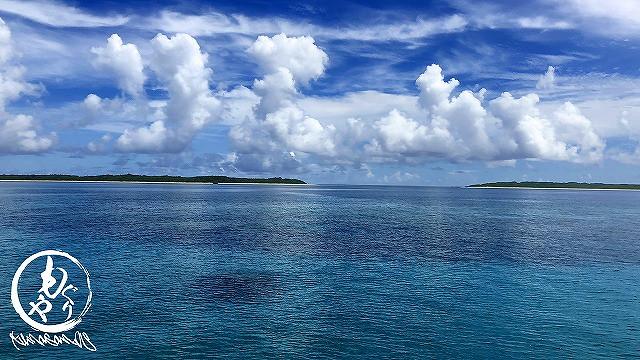 最高の黒島・パナリブルーが迎えてくれました♪♪