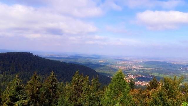 La plaine d'Alsace vue à partir du Mont Sainte-Odile