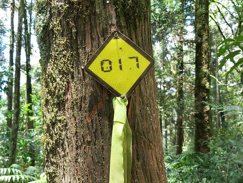 Songluo Lake: numbered trail signs for you to navigate