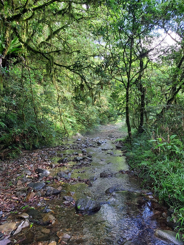 Songluo Lake: beautiful creek in River Nanshi