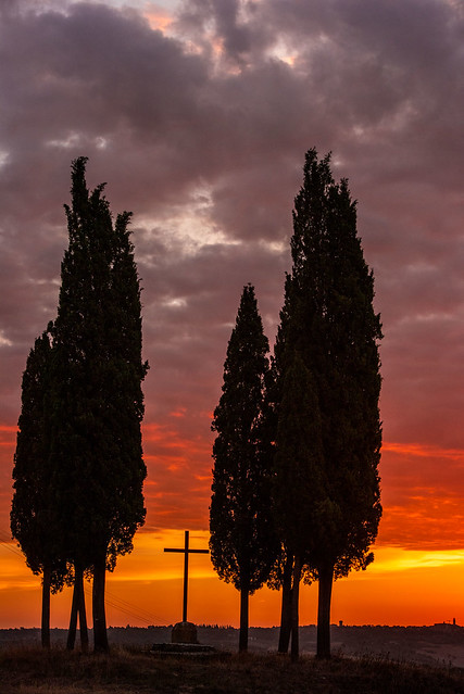 Red morning in Val d'Orcia