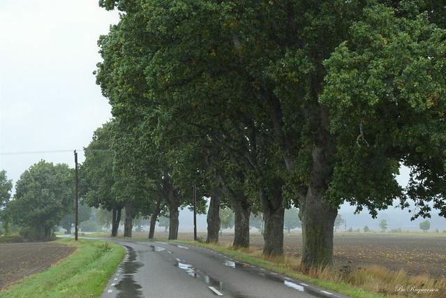 September Road. 🍂🍁