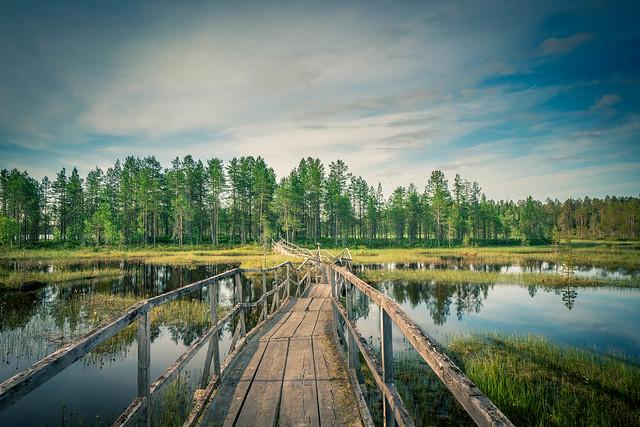 Suomen Luontokuvaajat