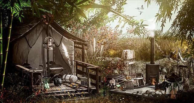 Fall Camp