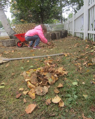 gathering her leaf piles