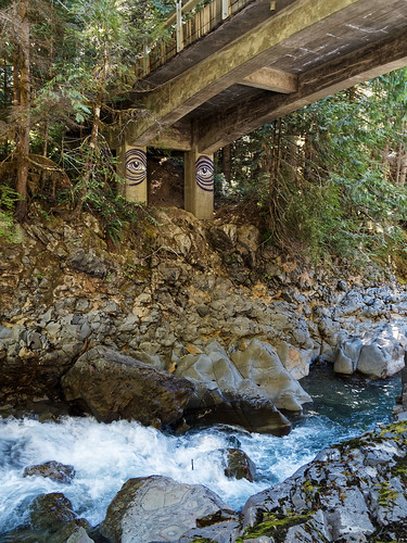 Bridge at Nooksack Falls | by Whidbey LVR
