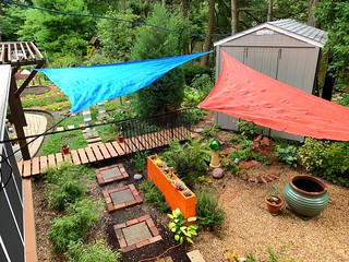 Lost a giant shade tree a couple years ago and planted new trees, but it will take a few years. Thinking outside the box I put up a couple sun shade sails. These are fun and will do what I need for awhile.