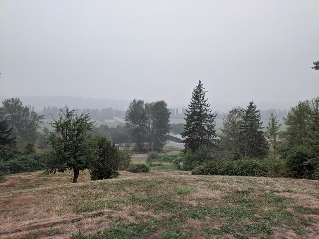 Sixty Acres in the Smoke