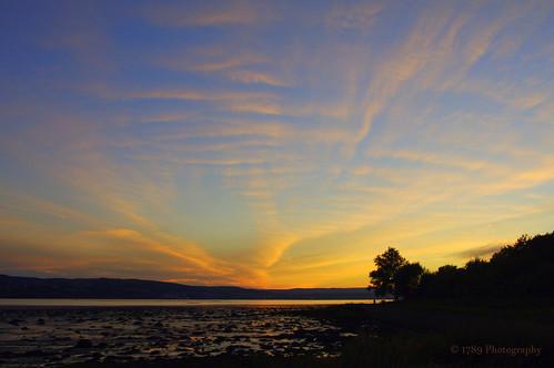 dumbarton sunset scotland riverclyde water sea firth sky clouds colour colourful silhouette shore coast coastal trees sunlight vivid outdoor landscape scenery night sundown art artwork