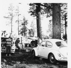 Field Day 1967 Lone Pine #1
