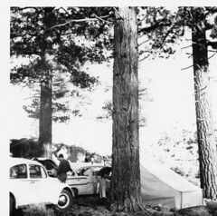 Field Day 1967 Lone Pine #2
