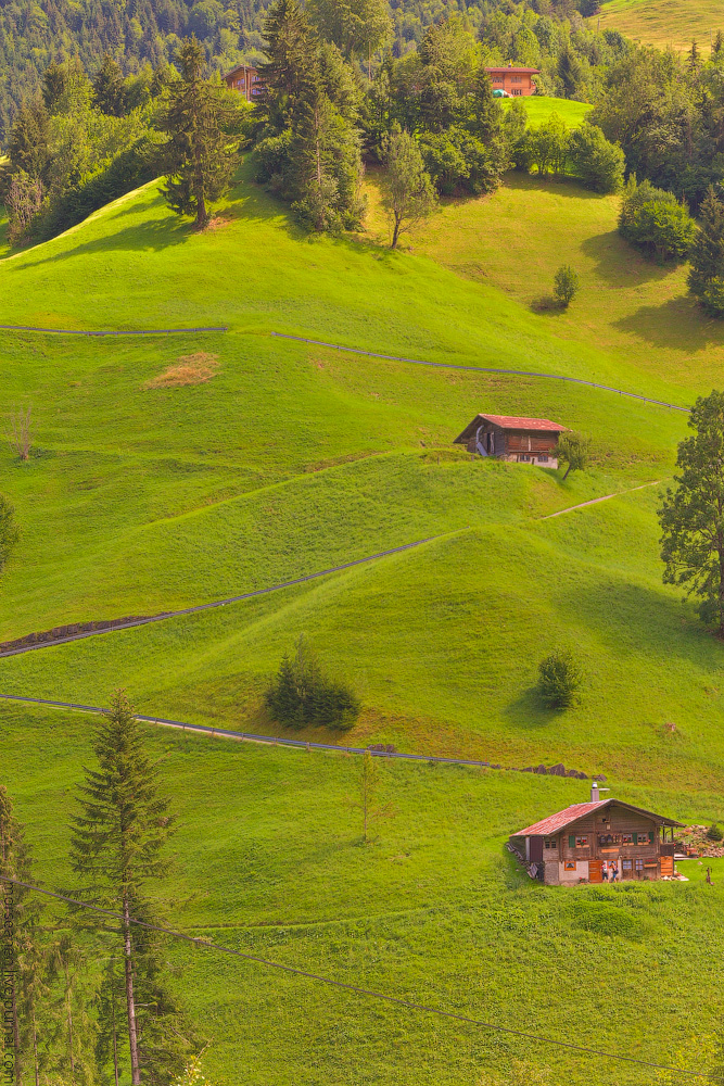 Schweiz-Beginning-2020-(29)