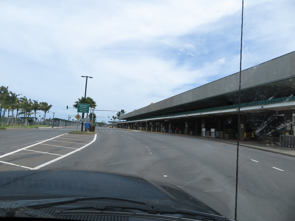 starr-200401-7628-Cocos_nucifera-almost_empty_airport_during_Covid_19-Kahului_Airport-Maui
