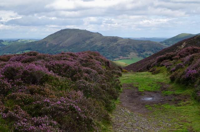 The Long Mynd - Shropshire