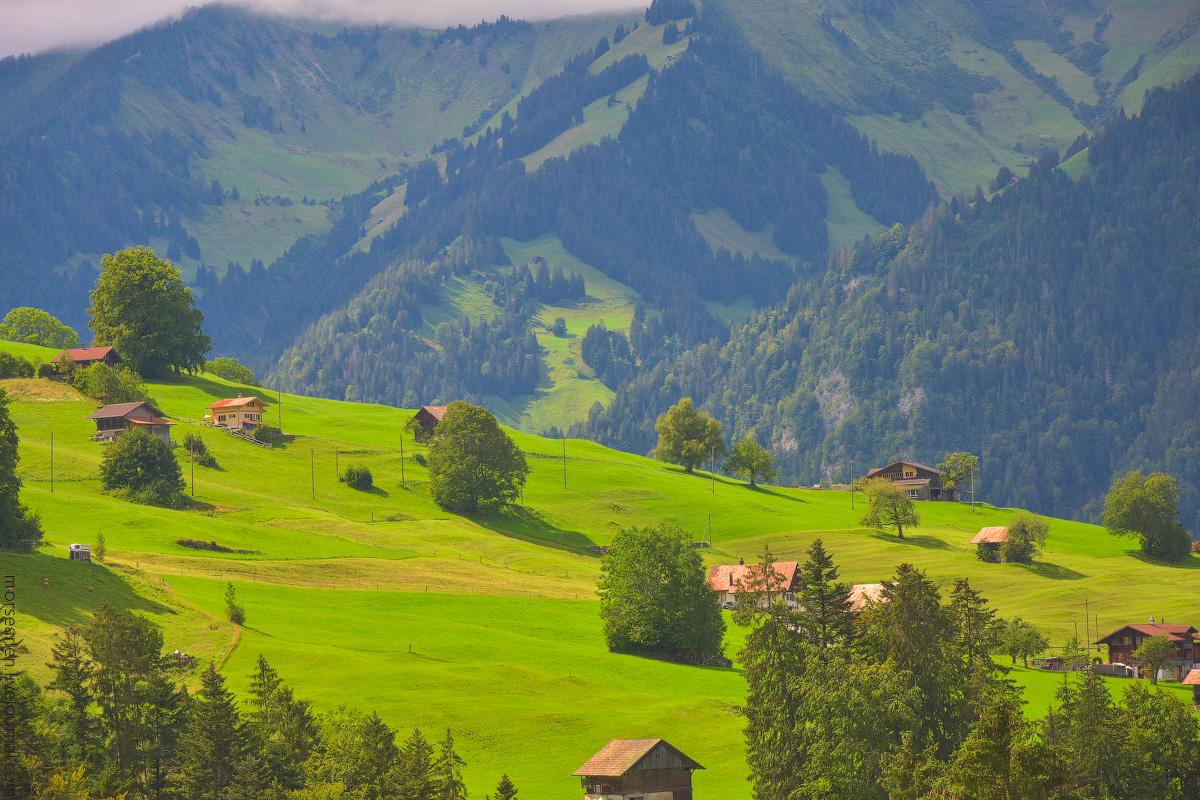 Schweiz-Beginning-2020-(31)