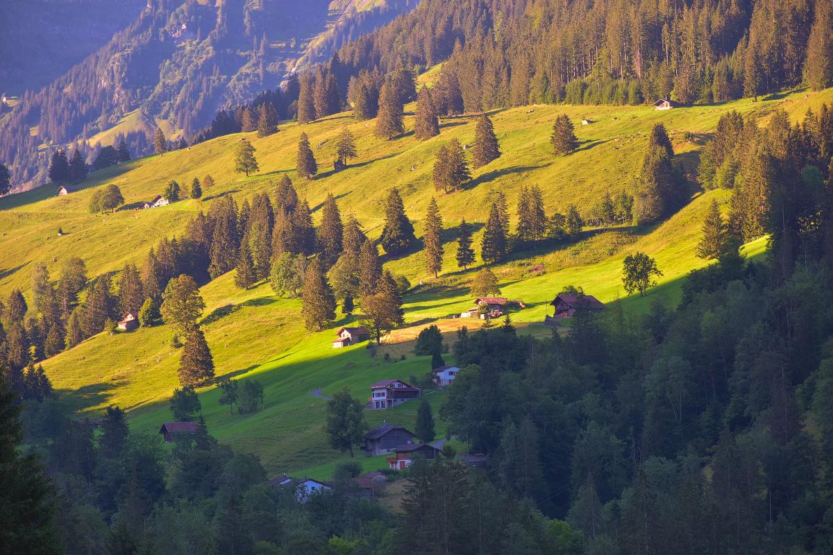 Schweiz-Beginning-2020-(40)