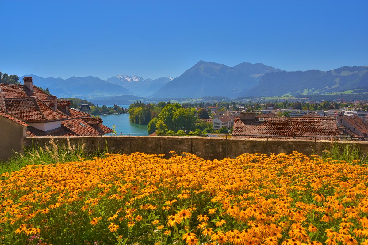 Schweiz-Beginning-2020-(38)