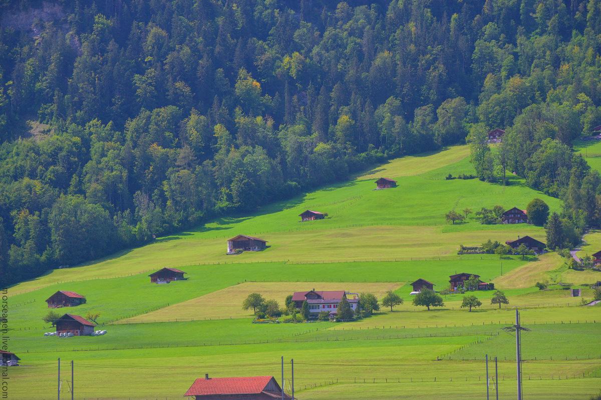Schweiz-Beginning-2020-(30)
