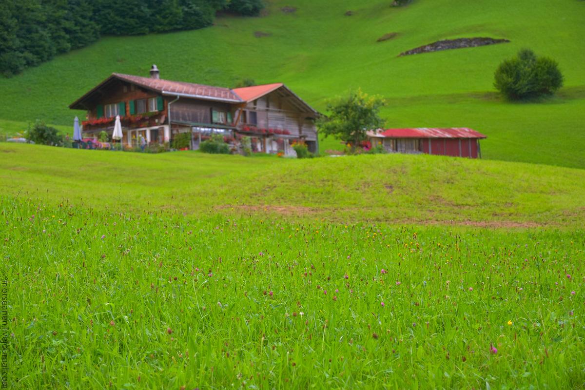 Schweiz-Beginning-2020-(5)