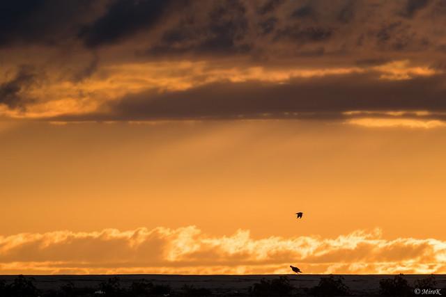 Baltic sunrise #2