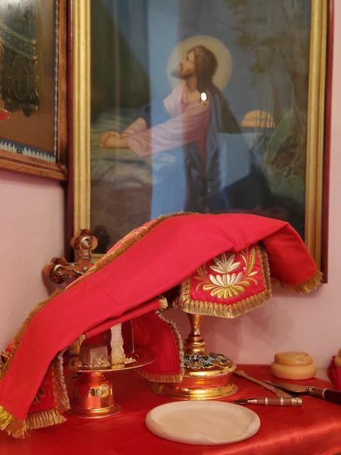 13 сентября 2020, В Неделю 14-ю по Пятидесятнице митрополит Кирилл совершил Литургию в домовом храме священномученика Игнатия Богоносца