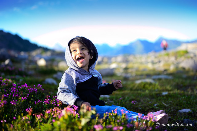 Mountain, wildflowers and baby