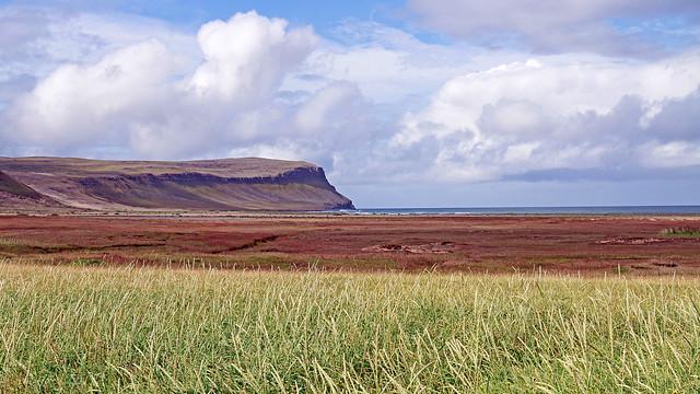 Breiðavík Beach (Westfjords), Iceland