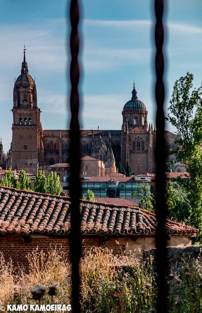 catedrales desde el molino