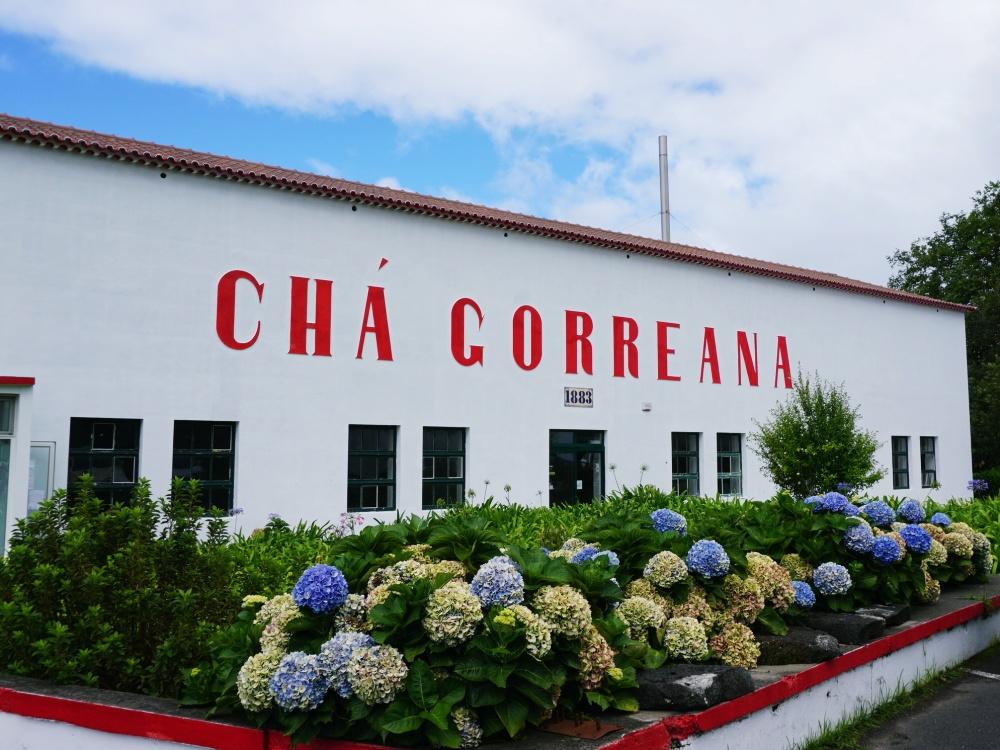 Cha Gorreana Azores