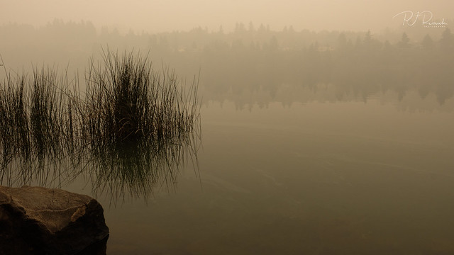 Lacamas Lake I