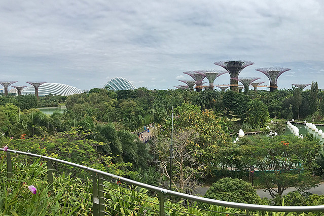 Layover in SG -  Gardens By The Bay