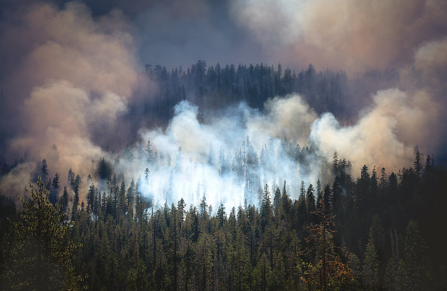 Paradise Lost (Creek Fire, Sierra Nevada)