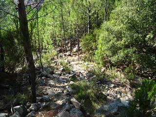 Le ruisseau de Peru vers le chemin de la brèche (HR11)