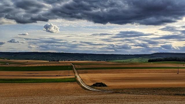 Les champs et les vignes de la Marne
