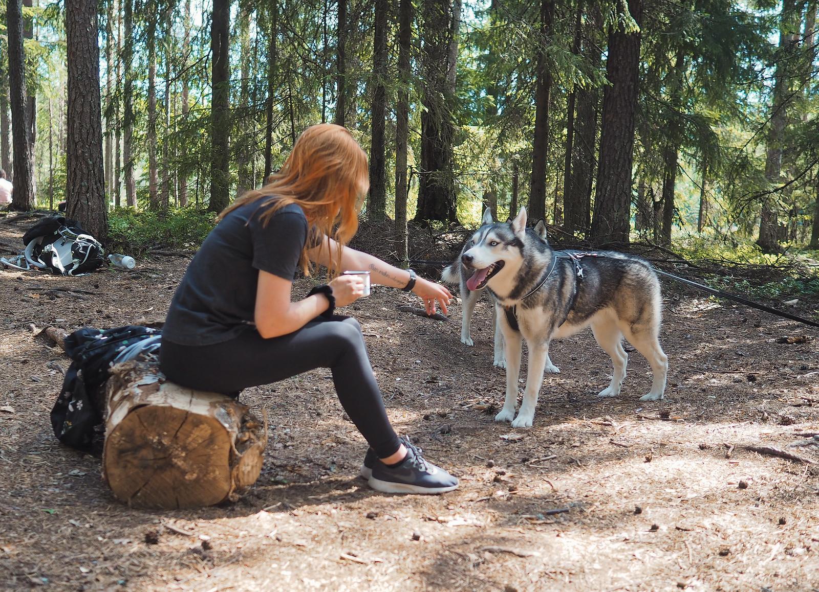 vinkit koiran kanssa retkeilyyn vuodenajat