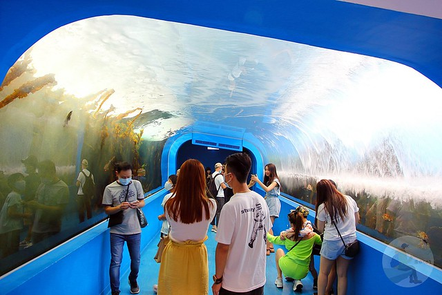 XPARK 都會型水生公園