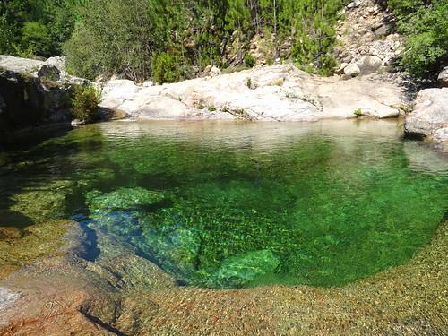 La vasque de la confluence Carciara/Peralzone