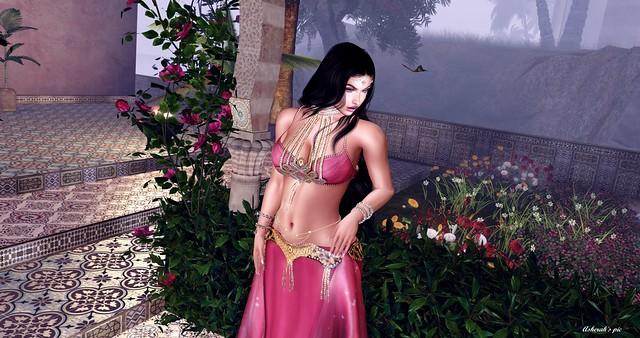 Belly Dancer - Rose of Desert