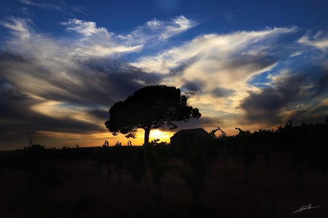 Últimos atardeceres del verano... ☀️   Last sunsets of summer... ☀️