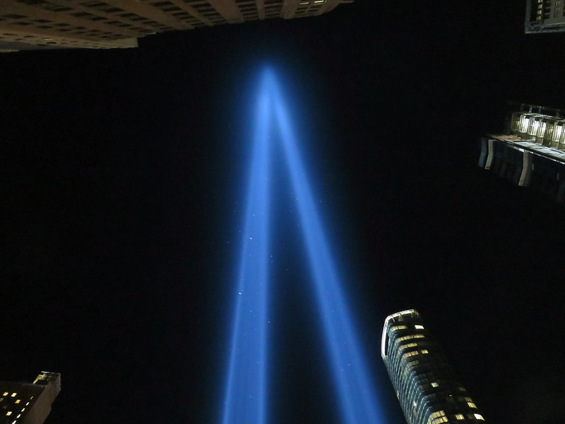 Birds trapped in the 9/11 memorial lights