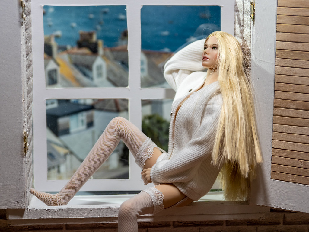 Phicen Window Posing 50342239267_9966b60eb8_b