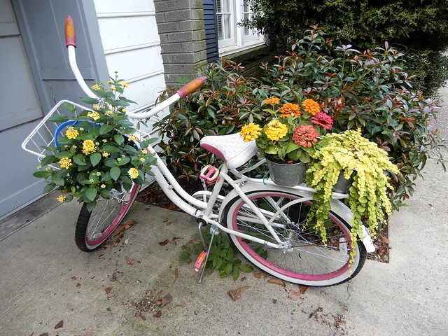 Garden on a bike