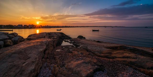 Good Morning Chapman Beach!  (3)