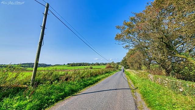 Walking Along Priddy Lane