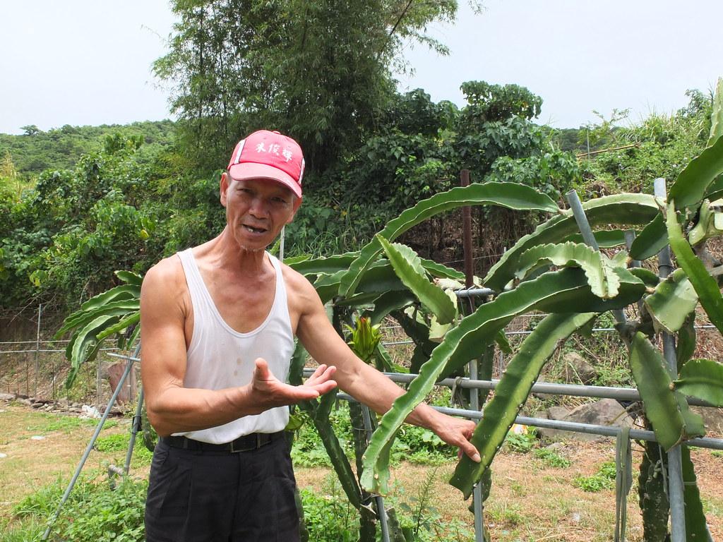高協成在滿州經營飆沙車隊,並種植友善栽培火龍果,閒暇時也擔任社區解說員。鄭雅云攝。