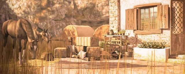 Desert Home - Barn